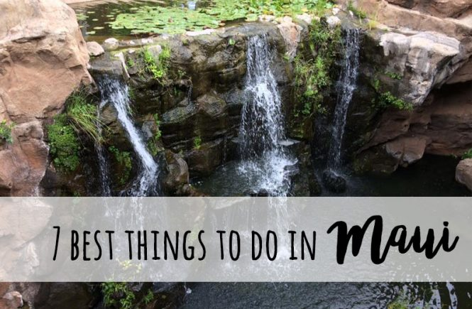 best things to do in Maui