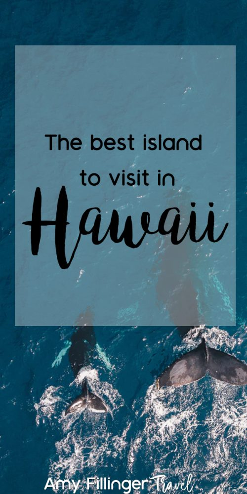 Are you looking for the best Hawaii island to visit? Look no further! The best Hawaii island depends on what you want to do. Do you want adventure? Romance travel? Lots of dining options? Upscale accommodations? Top-rated golf courses? Find out the best place for all of that, and more! #hawaiitravelagent #hawaiiexpert #hawaiivacation #hawaiitourism #hawaiitravel #travelagents #whytohireatravelagent #amyfillinertravel