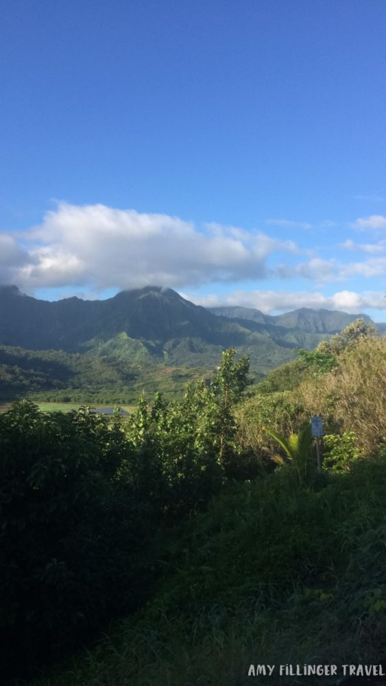 best things to do in Kauai by a Hawaii travel agent