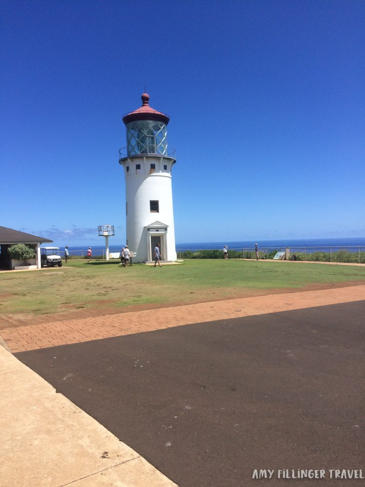 best things to do on Kauai by a Hawaii Travel Agent