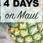 Spending a short time on Maui? I'll tell you how to make the most of it! You won't want to go home, but here is how to spend 4 days on Maui. As a Hawaii Travel Agent, I share the best Maui travel tips, things to do on Maui, where to stay on Maui and more! #tealpineappletravel #mauitraveltips #mauitravelagent #mauivacation #shortmauivacation #quickmauivacation #hawaiiislandhopping #4daysonmaui #hawaiitravelagent