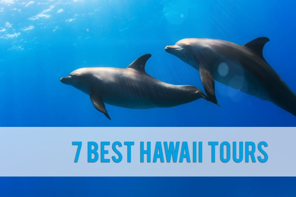 best Hawaii tours