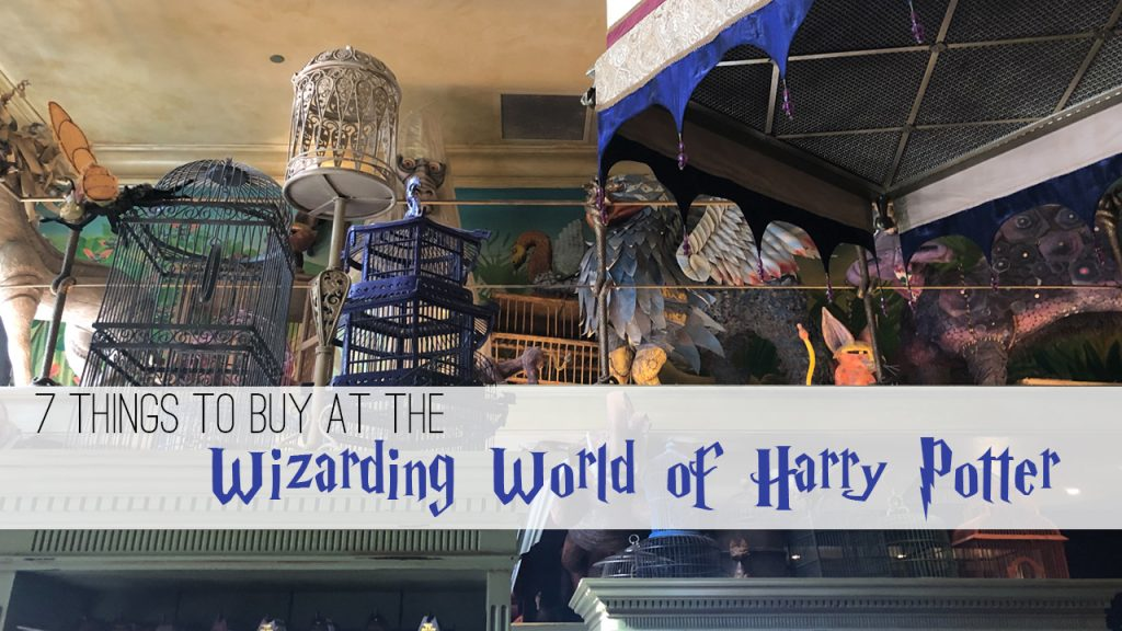 things to buy at the Wizarding World of Harry Potter