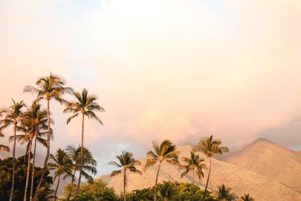 tips for planning a Hawaii destination wedding