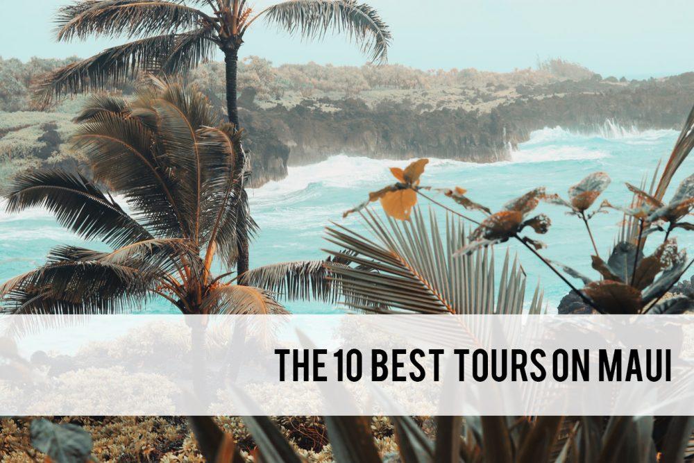 the 10 best Maui tours