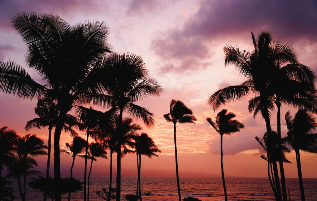 reasons to honeymoon in Hawaii