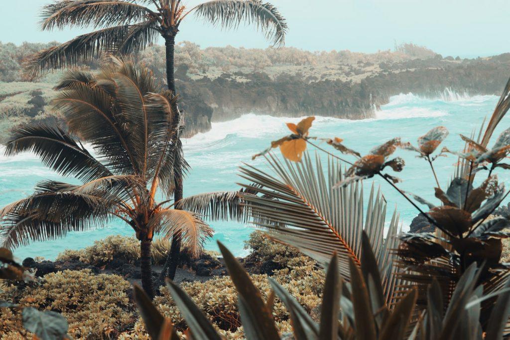 the best Maui tours | Road to Hana