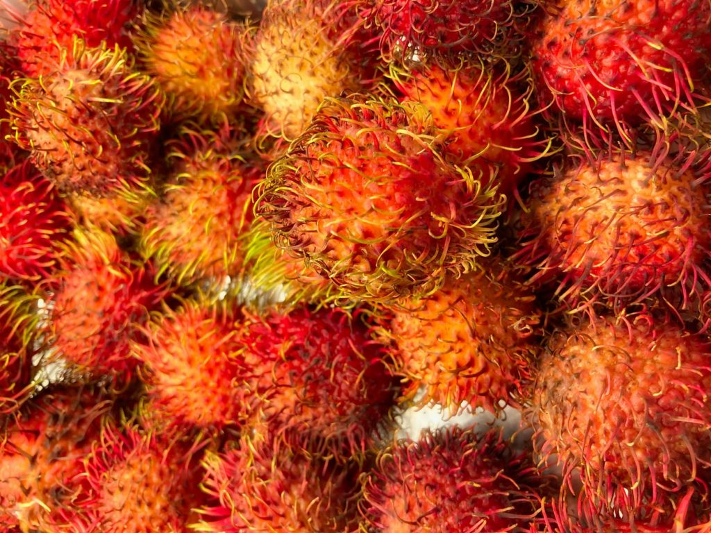 Hawaii fruits to try